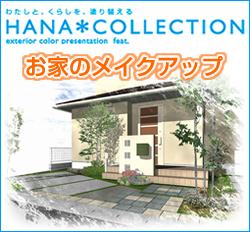 HANA COLLECTION ハナコレクション